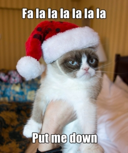 Grumpy Cat wants you to give up commercial Christmas by fighting MCS.