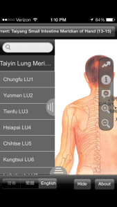 There are also phone apps for acupuncture meridians.