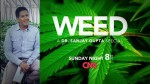 CNN medical reporter Dr. Sanjay Gupta produced a series about the anecdotal benefits of cannabis for certain chronic medical conditions, like epilepsy.