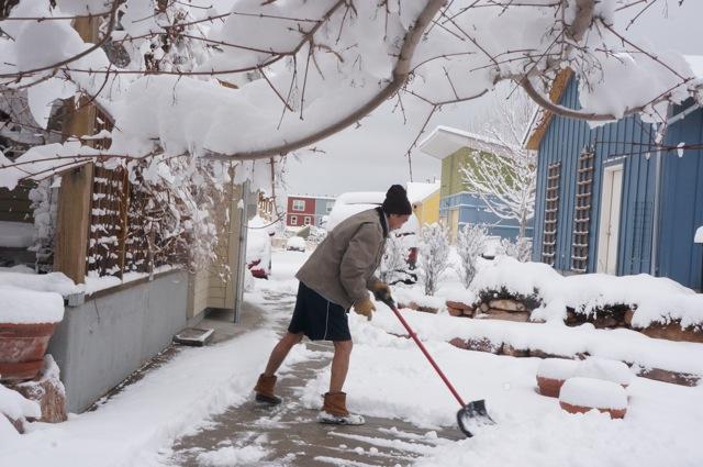 alan-shoveling
